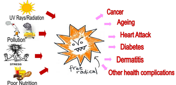 role of free radicals in health and diseases essay However, the panel on dietary antioxidants and related compounds stated  the  role of this important vitamin in human health and disease still.