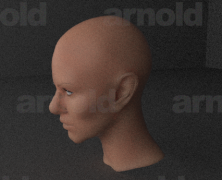 Arnold for Maya – Image Based Lighting
